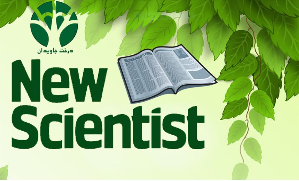دانلود رایگان مجله New Scientist؛ (July 11th, 2020)