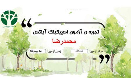 تجربه آزمون محمدرضا یکی از زبان آموزان درخت جاویدان