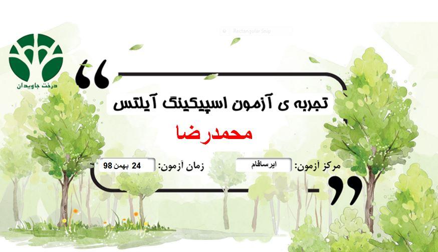 تجربه آزمون محمدرضا یکی از زبان آموزان درخت جاويدان