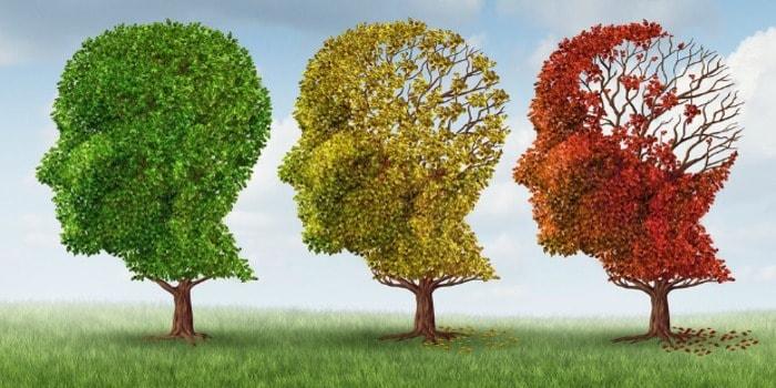 رایج ترین اصطلاحات انگلیسی: موضوع: Memory and mind