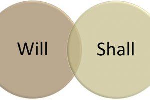 will-vs-shall